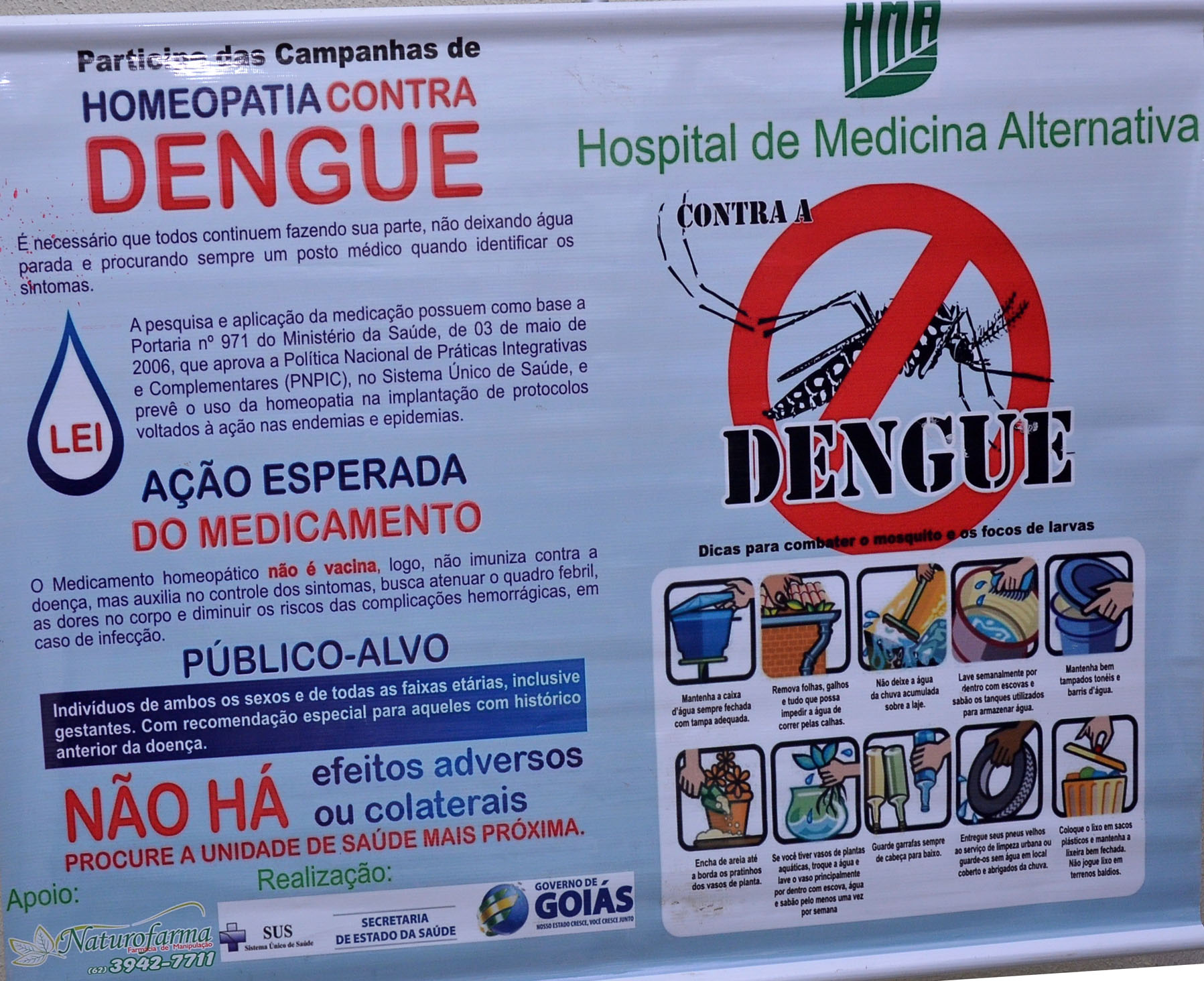 goias homeopatia e dengue 1